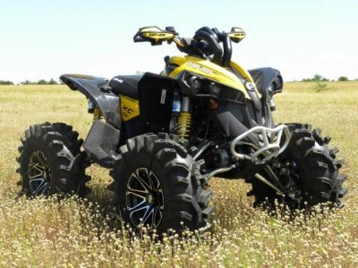 Шноркели для квадроцикла Can-Am Renegade G2